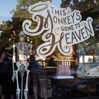 This Monkey's Gone to Heaven, A Lovely Collection of Curios